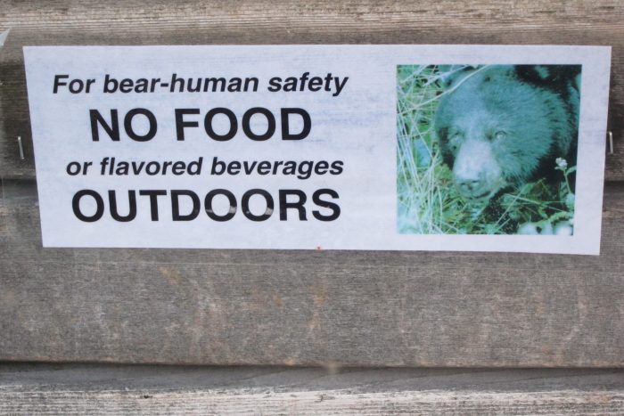 26. Sorry friends, BBQs and cold brews on sunny days are just not an option. It's for your own safety. And for the safety of the bears, of course. Totally logical.