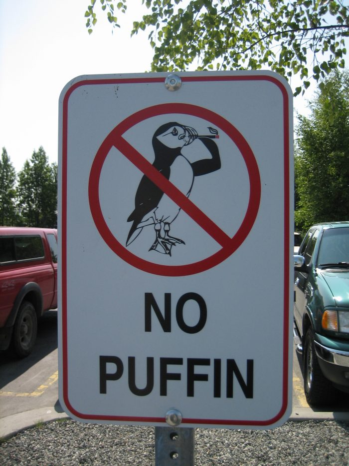 25. Keep those cigs outta here. Because the puffins said so.