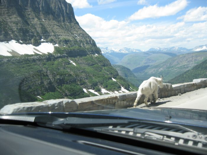 2. Here's part of the view from the gorgeous Going-to-the-Sun Road at Glacier National Park.