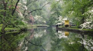 There's Something Incredible About These 12 Rivers In Delaware