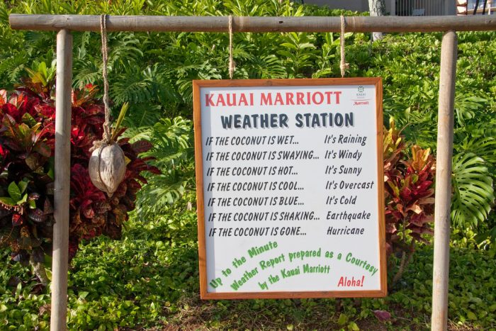 5. Weather reporting, Hawaiian style - Coconut Weather Station prepared by the Kauai Resort Marriott