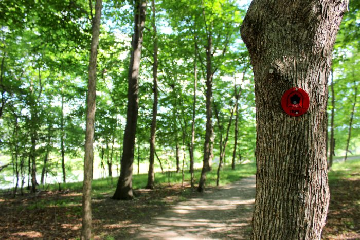 2. Throughout the island you'll find all of the trails very well maintained and marked!