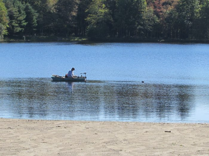 4. Great Hollow Lake is practically a beach in the woods, giving you the best of both worlds!