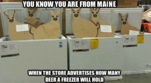 Here Are 15 Jokes About People In Maine That Are Actually Funny