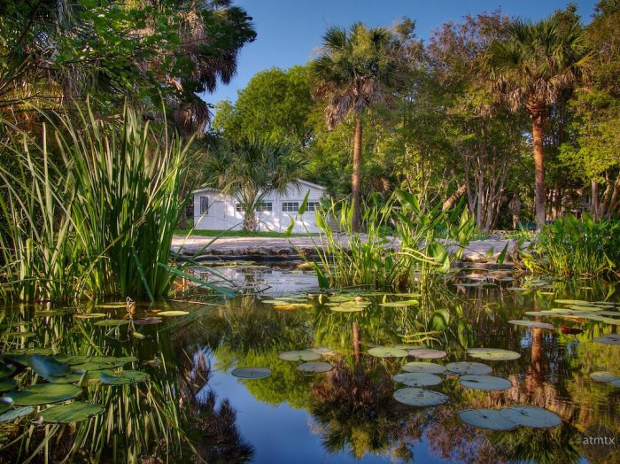 10. Enjoy a picnic among the water lilies at Mayfield Park.