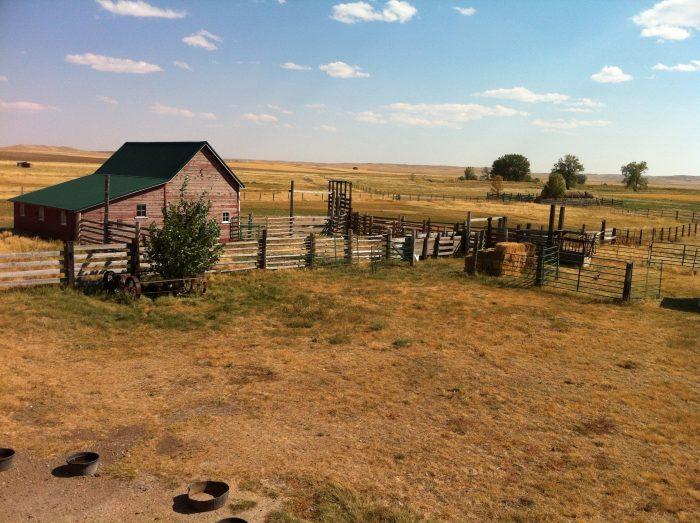 1. A peaceful farm on the outskirts of Geraldine.