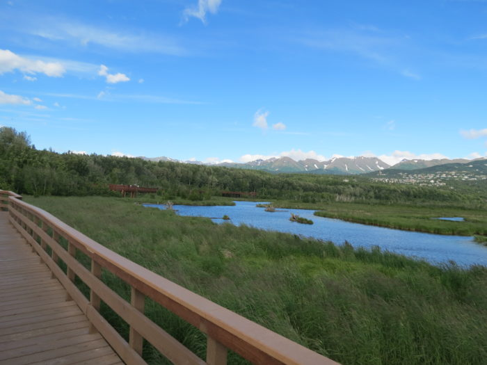 3. Potters Marsh – Anchorage