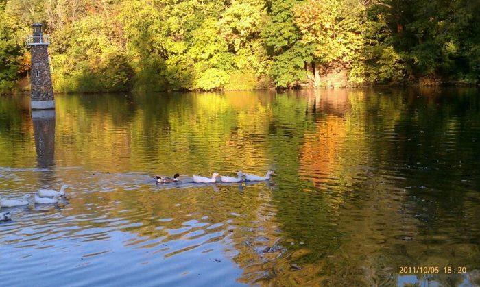 3. Pendleton Falls Park Riverwalk - Pendleton