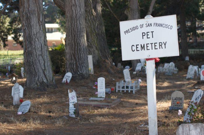 2. Presidio Pet Cemetery