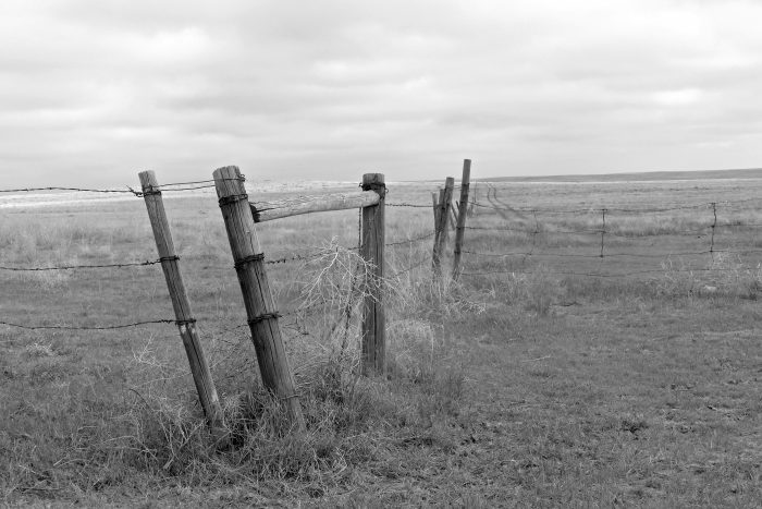 Posts of the Prairie