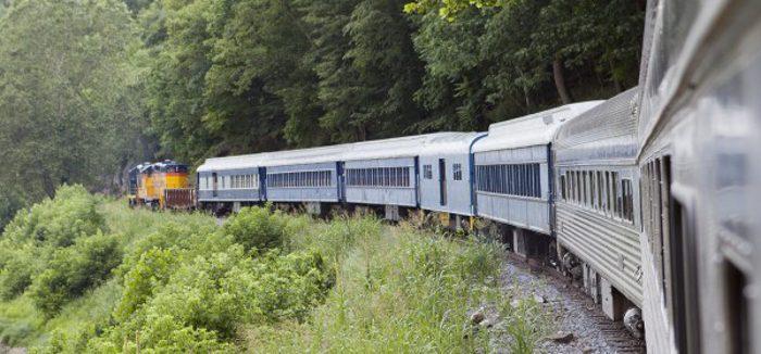 Potomac-Eagle-Trough-Traintrough1