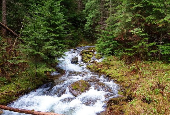 And you'll love the lush, creek-side setting and intermittent waterfalls.