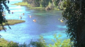 You Will Not Believe This Incredibly Colorful State Park Is Hiding In Central Florida