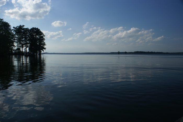10. Reelfoot Lake - Tiptonville