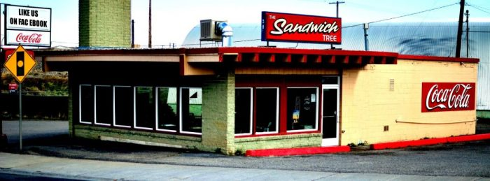 4. The Sandwich Tree, Idaho Falls