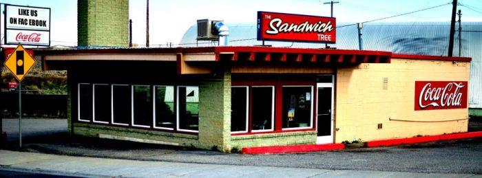 4. The Sandwich Tree, Idaho Falls