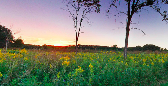9. You can find gorgeous parks in Southern Minnesota, and many of them have plenty of room for you to camp and relax, because they aren't over-visited like those North Shore ones!