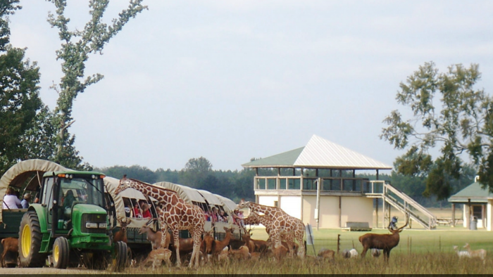 The Global Wildlife center is open seven days a week and offers group tours and rates.