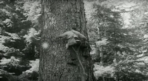 This Rare Footage In The 1950s Shows Oregon Like You've Never Seen It Before