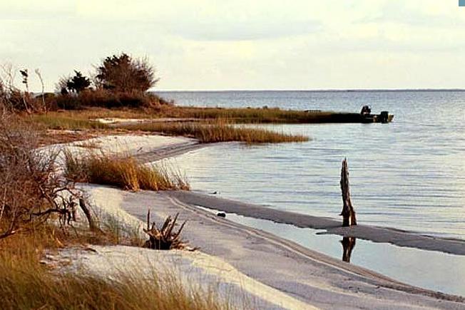 3. Cedar Island