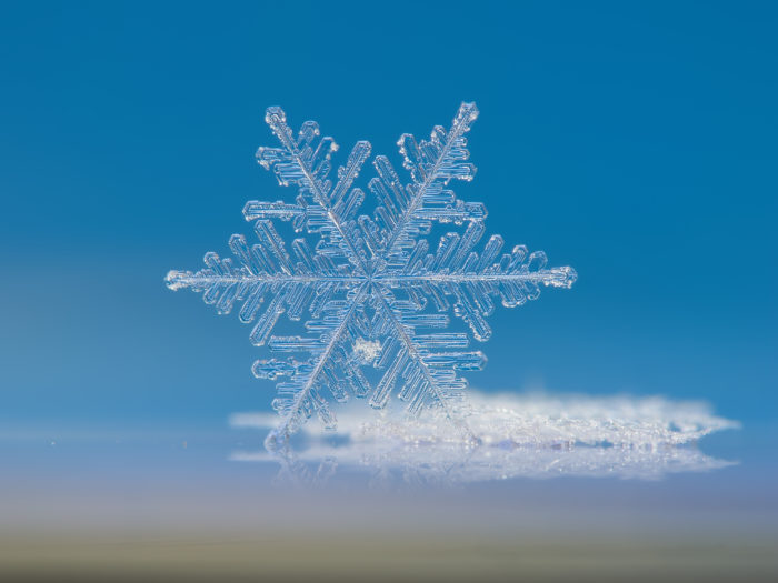 7. Our state also holds the record for the largest snowflake ever observed.