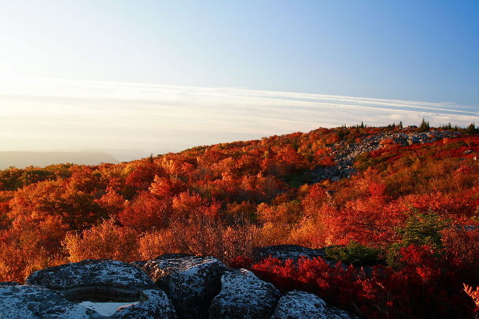 8. Dolly Sods Wilderness,  Monongahela National Forest
