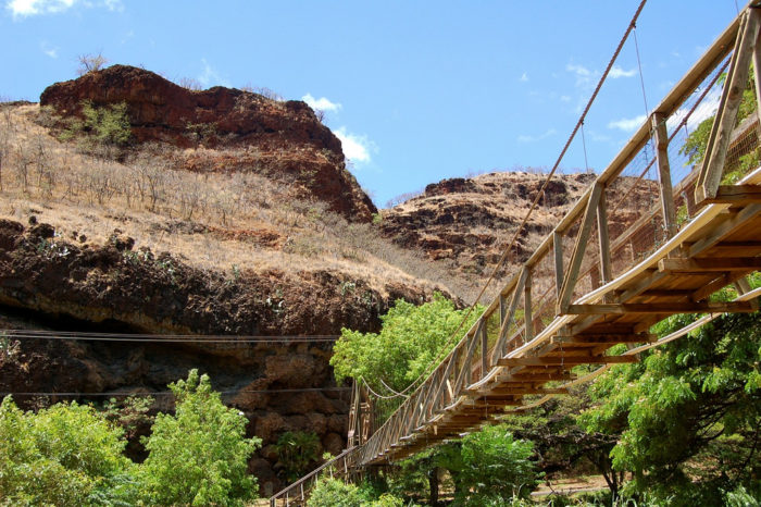 5. Swinging bridges are meant to make your palms sweat, right?