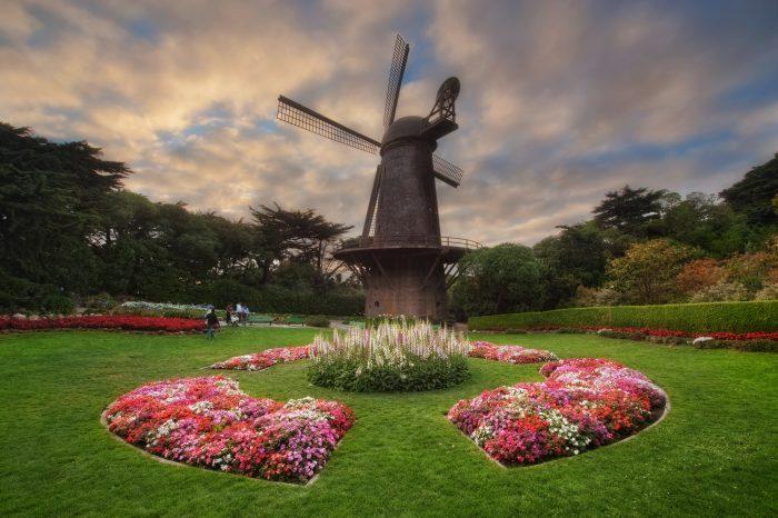 8. Gaze up at the windmills at Golden Gate Park.
