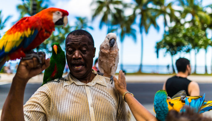 6. There's the ever-present man with all the parrots...