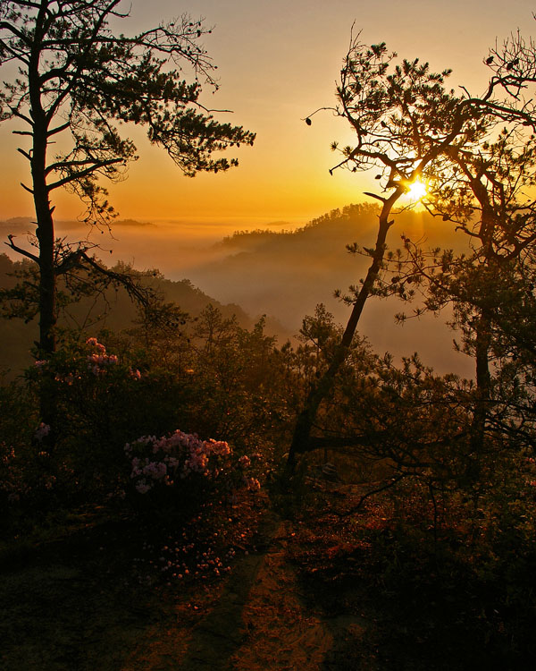 3. The Red River Gorge Scenic Byway
