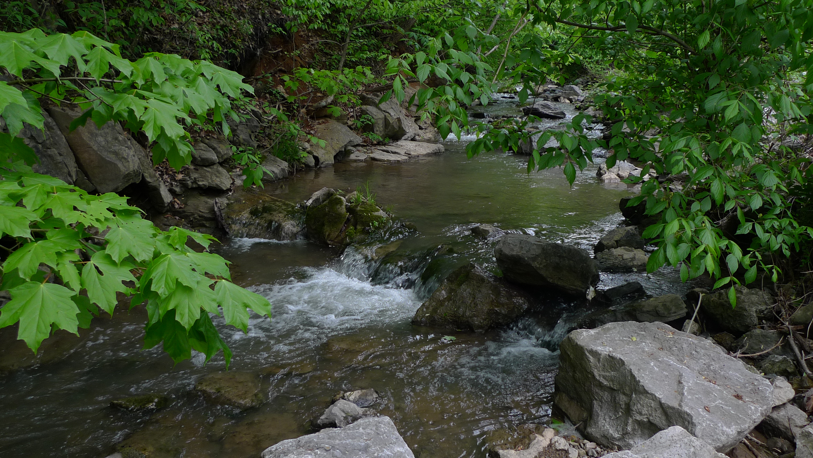 This Little Known Natural Oasis Is Hiding In Kentucky... And You're Going To Love It