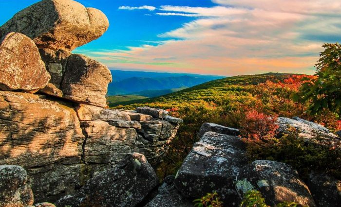 They will also take you on a tour of the beautiful Dolly Sods wilderness.