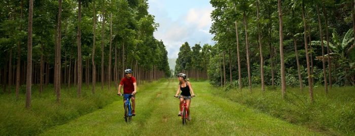 Ideal for everyone from running enthusiasts to families with young children, the trail is relatively flat, and can be easily walked in two to three hours. If you're up to it, mountain bike rentals are also available on the property.
