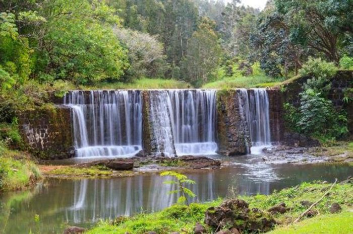 Built to help connect farmers to water, the dam is still, in fact, crucial to farming operations across the plantation, as well as a serene oasis in which to relax.
