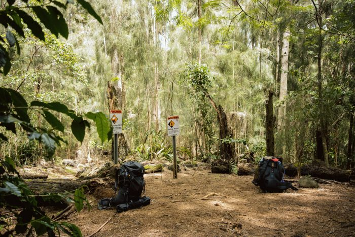 While this may appeal to some, the thought of being so isolated from the world is a scary thought for many. Anyone hiking the Muliwai Trail should bring enough food, water, and supplies to keep themselves – and their partners – alive, at least overnight.