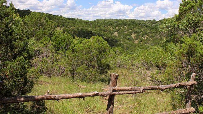 Wild_Basin_Lookout_Austin_Texas