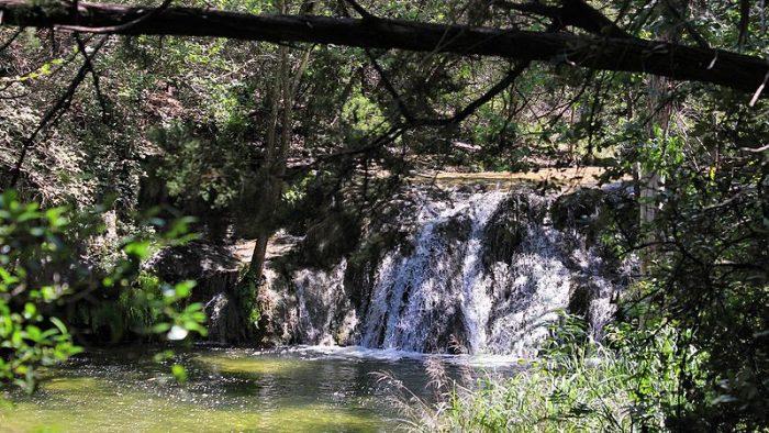 Wild_Basin_Waterfall_Austin_Texas
