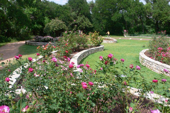 5. Take some photos at the Zilker Botanical Garden.