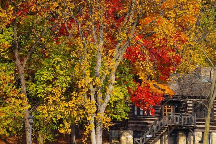 6. Pere Marquette State Park (Grafton)