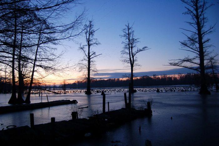 9. Horseshoe Lake (Granite City)