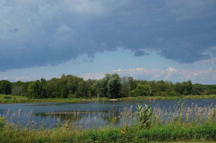 12. Shabbona Lake State Park (Shabbona)