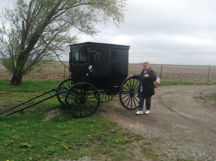 6. Amish Tour