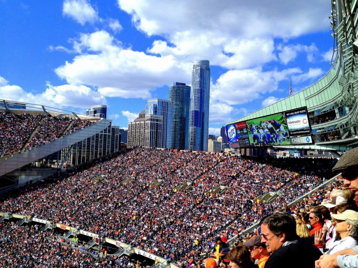 3. Embrace the ups and downs of Illinois sports.