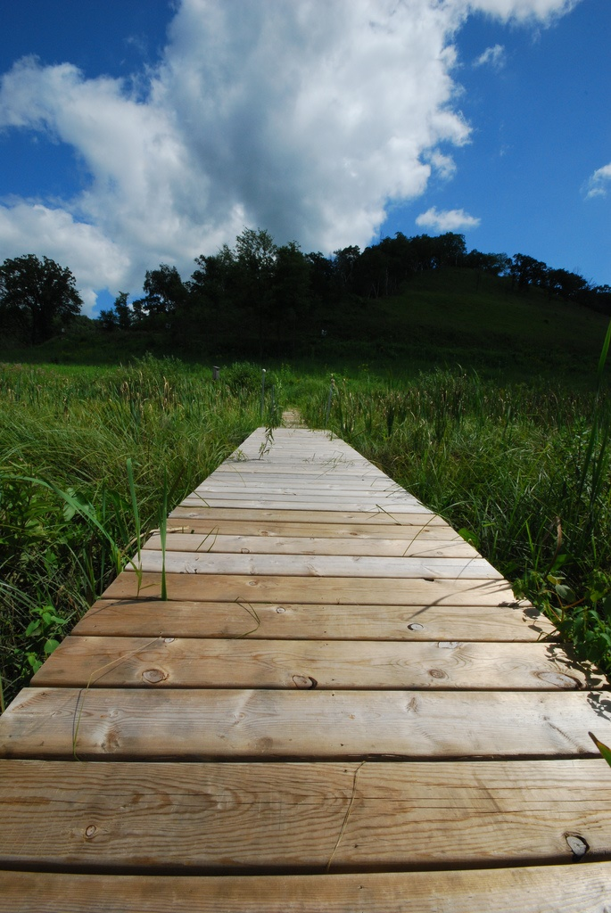 Wingra Park Madison If This Is What >> 9 Of The Most Scenic Boardwalks in Wisconsin