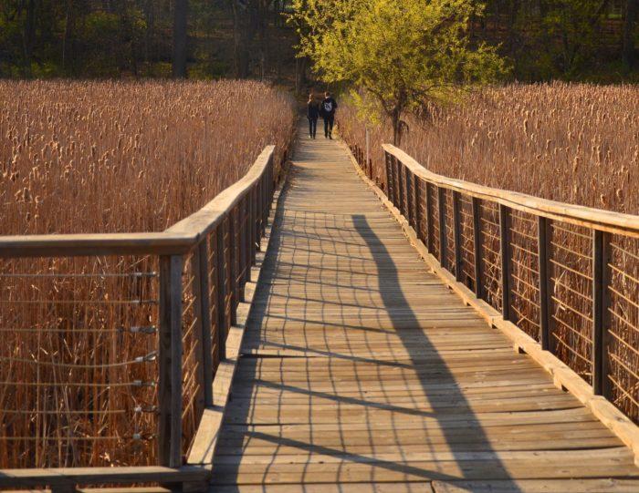 7. Lake Wingra Boardwalk (Madison)