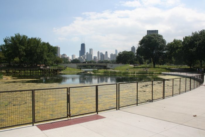 7. Lincoln Park Zoo (Chicago)