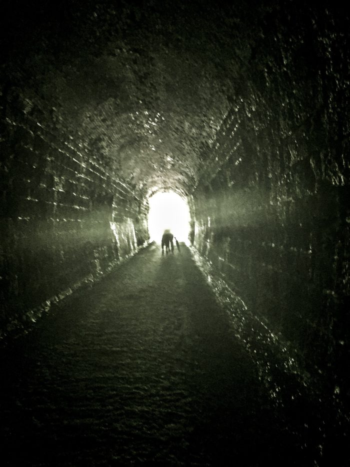 8. The tunnel is 1,694 feet long.