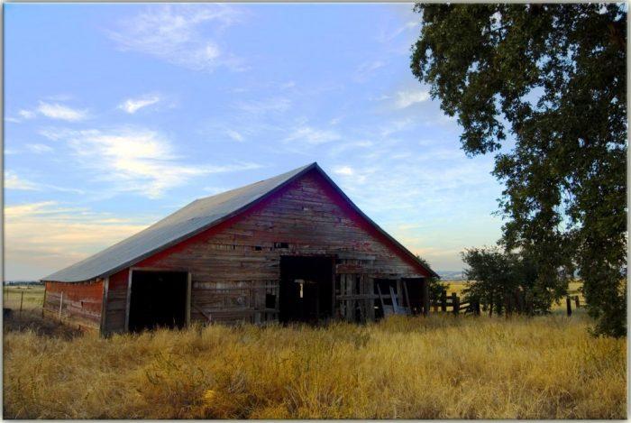 20 Beautiful Old Barns In Northern California