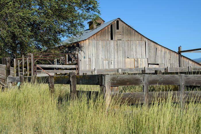 13. Little Shasta Valley