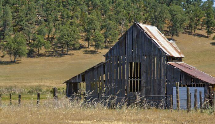 7. Shasta County